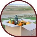 Naranjas de Zumo 10 kg + 500 ml Aceite Oliva Virgen Extra