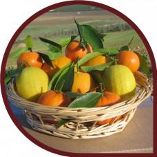 Naranjas de Zumo 10 Kg + Limones 5 Kg
